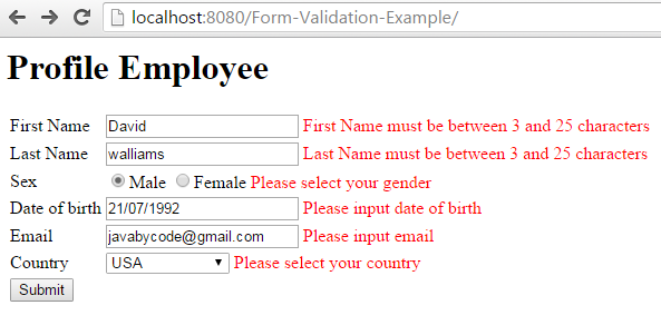 Spring MVC Form Validation Annotation Example input